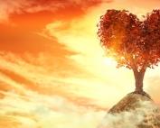 La sabiduria nuestro objetivo principal en la vida I..jpeg La sabiduria nuestro objetivo principal en la vida