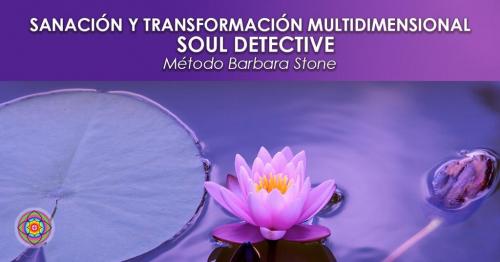 https://www.kinesiologiakashica.com/wp-content/uploads/2020/11/Sesión-de-Sanación-Soul-Detective-con-Kinesiología.jpg