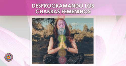 Workshop Desprogramando los chakras femeninos Kinesiologia Akashica